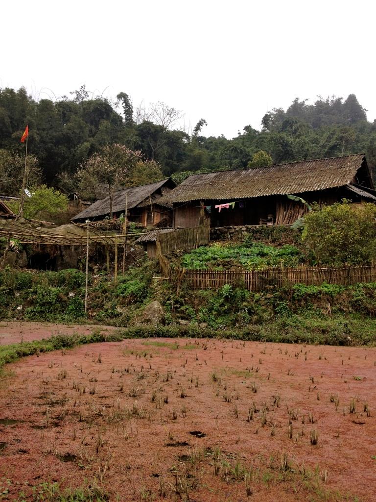Vietnam_Sapa_hut