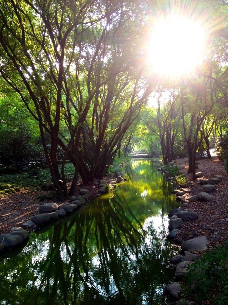 Shanghai_Gongqing_Park1